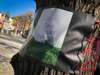 WANDERING TREES_3.jpg