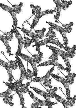 witte bloedcellen gipp.jpg