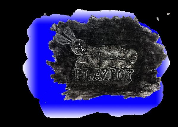 playboykopie.png