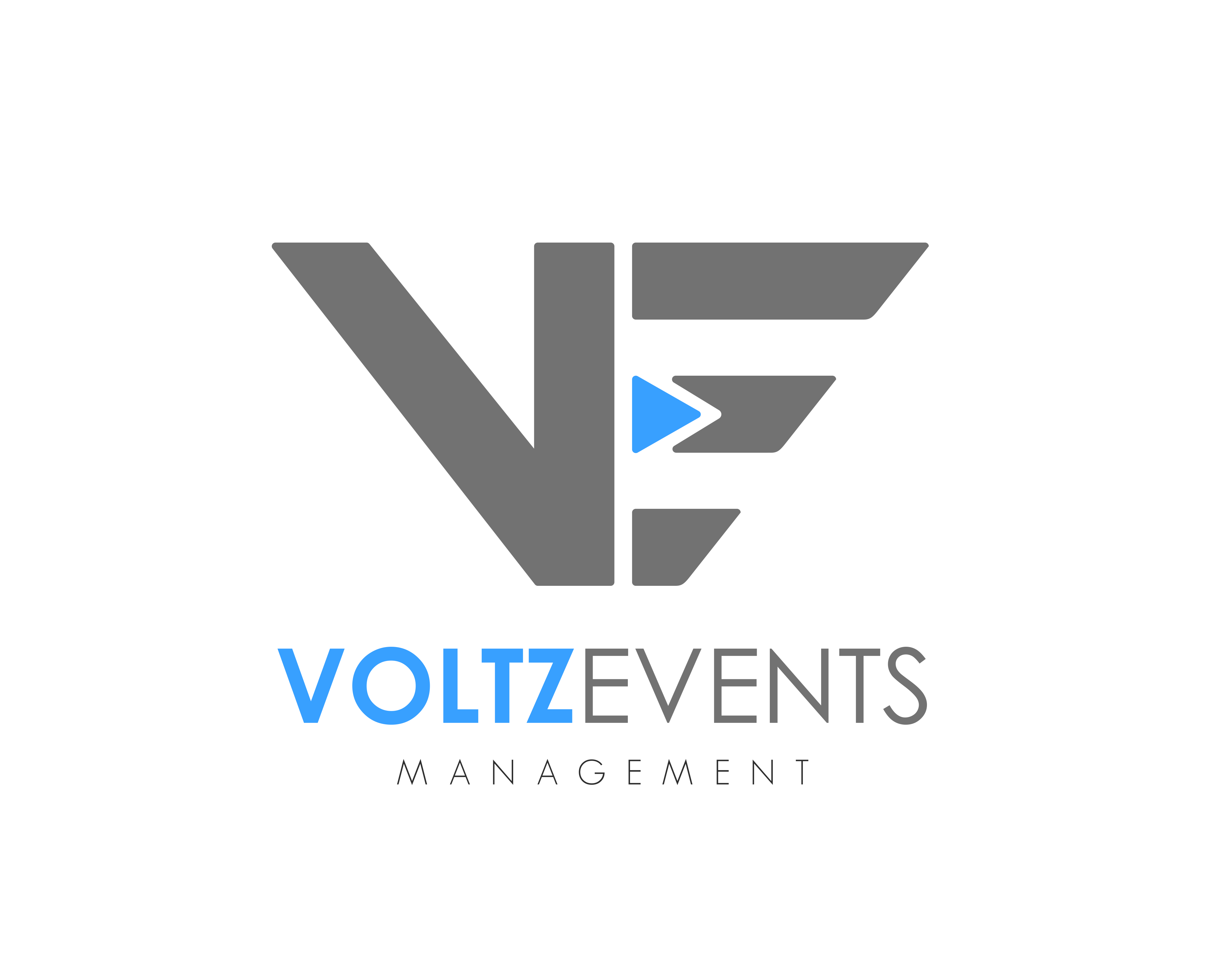 Voltz - flat - High Res - transparent background