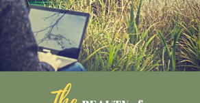 Ep 279: The BEAUTY of REMOTE WORK