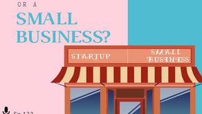 Ep 133: Am I considered a STARTUP or a SMALL BUSINESS?