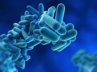 Legionella risk assessment london UK