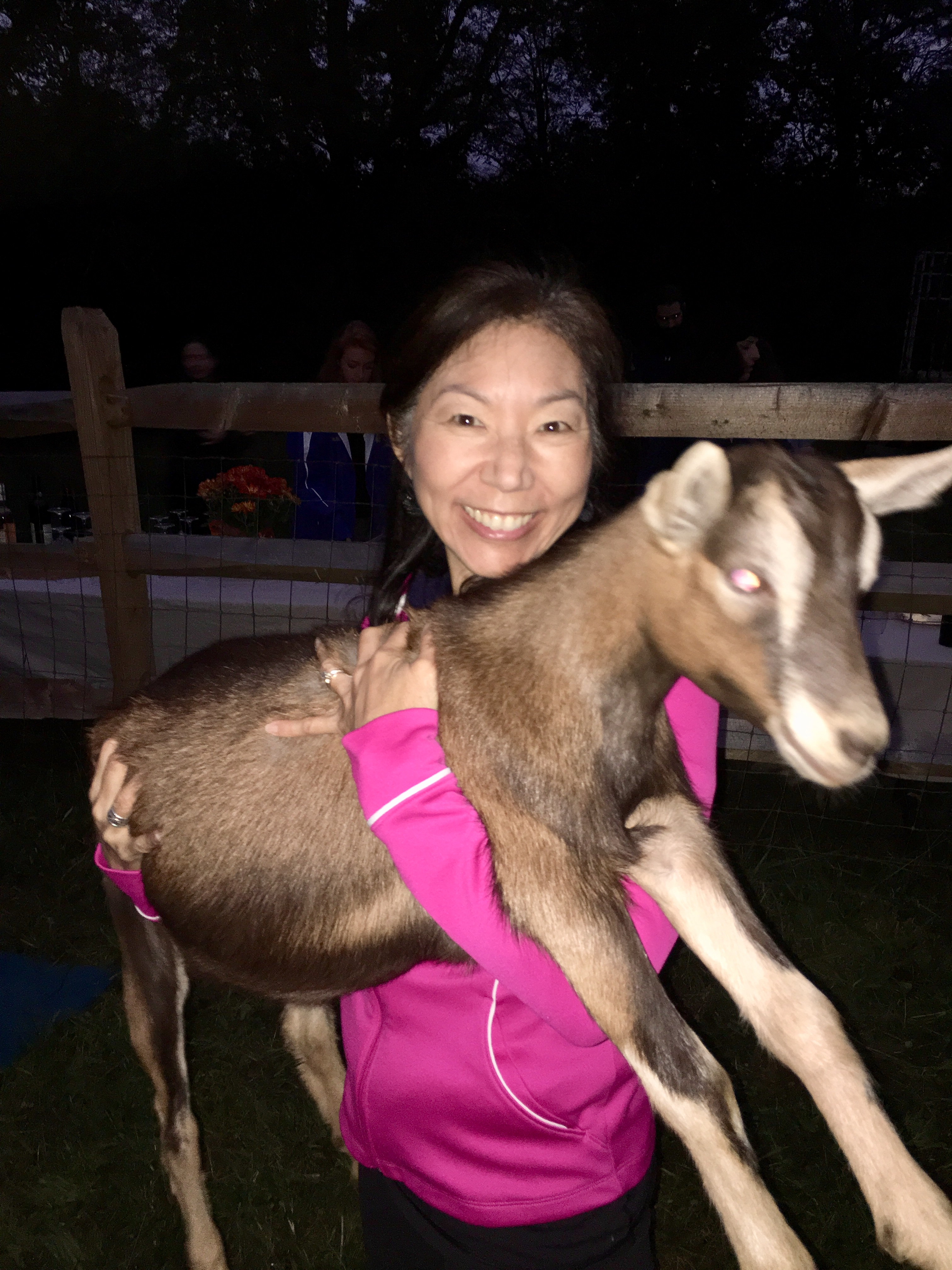 My goat yoga partner