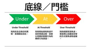 犬隻焦慮知識系列 - Threshold 底線