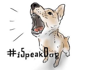 吠叫 Barking