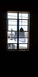 window_best.jpg