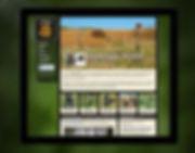 web_04_SNP.jpg