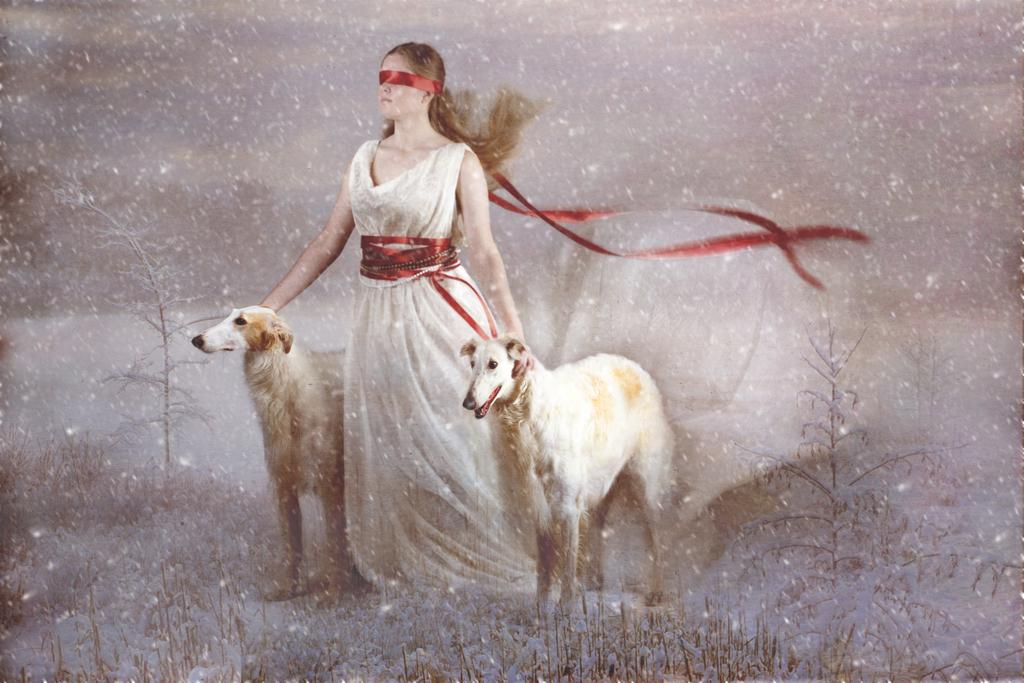 animals by Rasa G-V