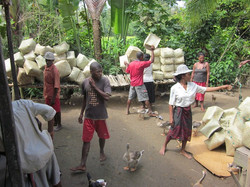 Organizing Silkworm Baskets