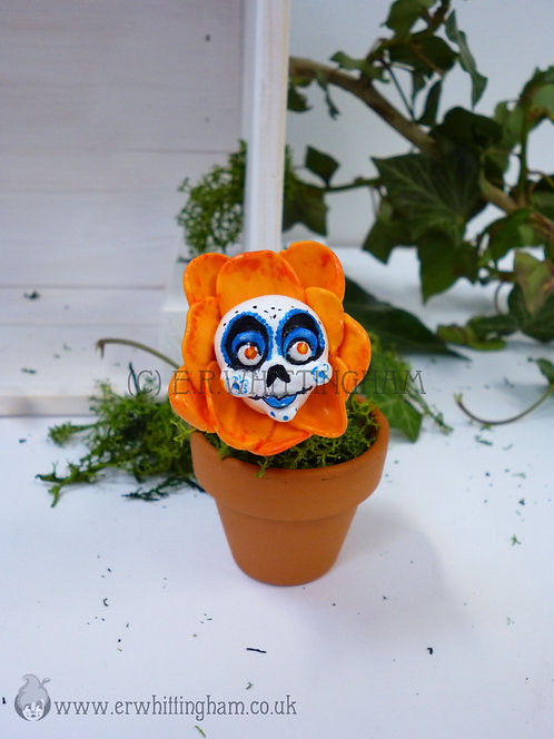 Sugar Skull Mexican Marigold