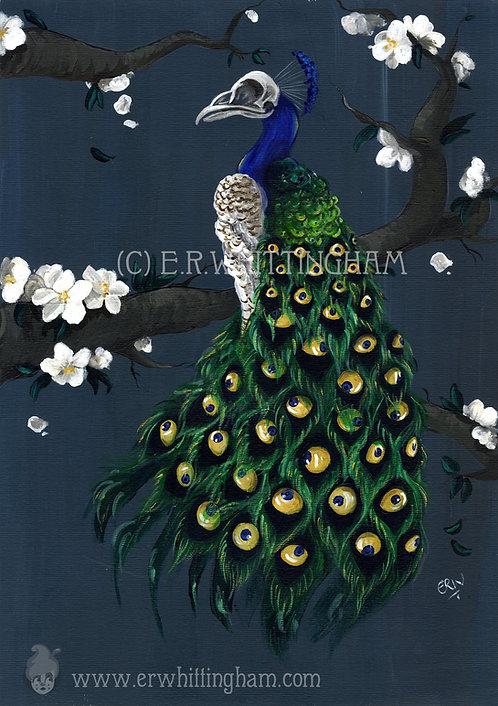Peacock GREETINGS CARD