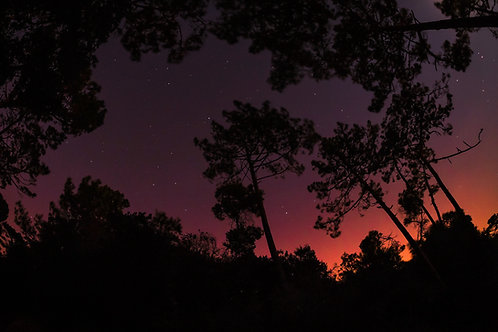 Stars over Azoia, Portugal