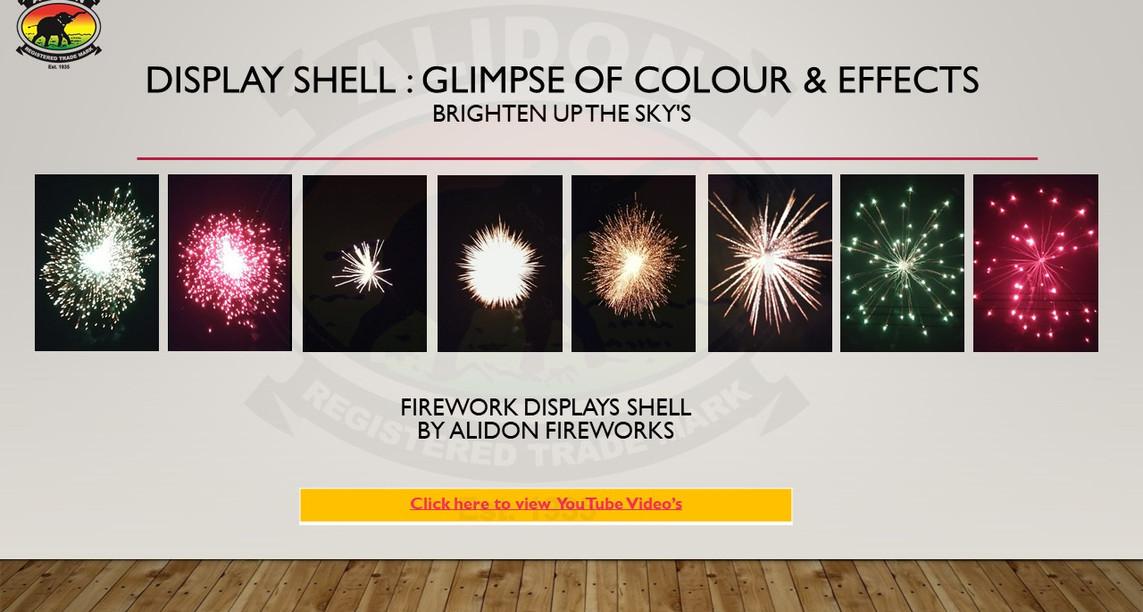 12. Shell Images.JPG