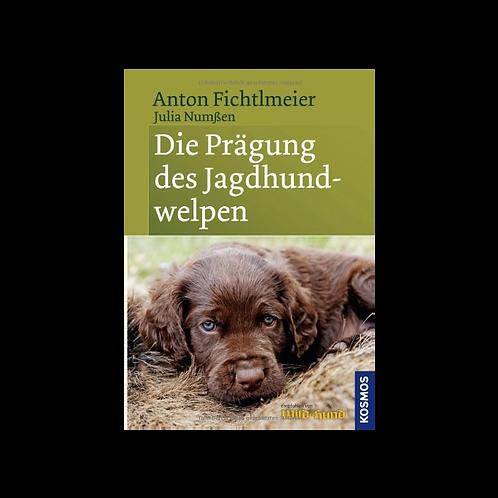 Die Prägung des Jagdhundwelpen / Anton Fichtlmeier