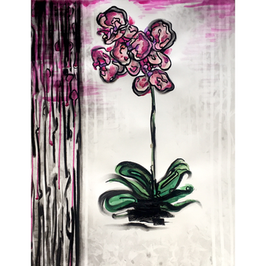Orchid VII