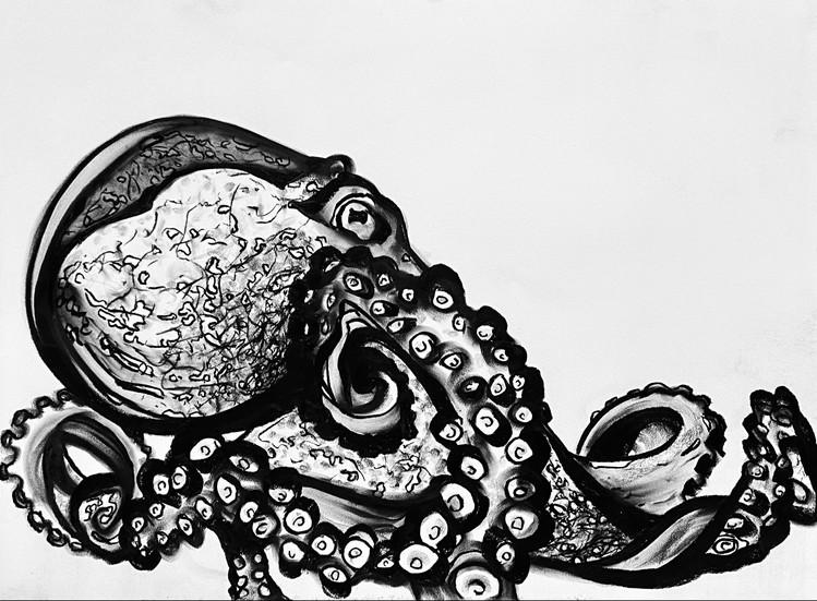 Octopus III
