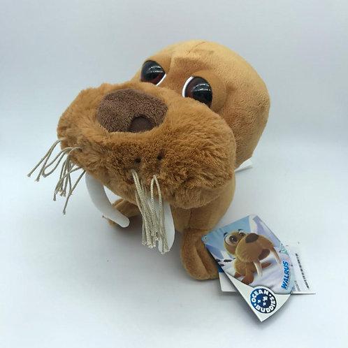 Walrus - Tricheco
