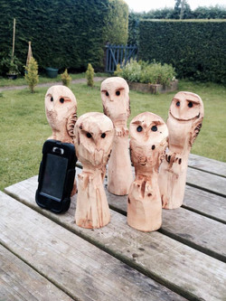 Small Owl chainsaw carvings