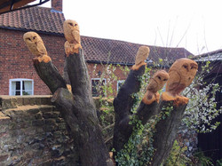 On-site Owl chainsaw carving after a
