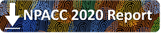 NPACC 2020 Report Download.png