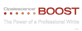 boost-logo.jpg