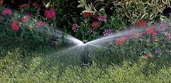 nozzles spray