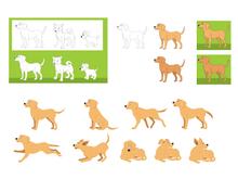 Dog final designs