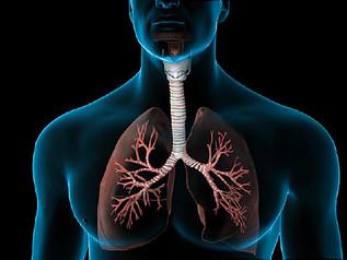 Medical English with Grey's Anatomy
