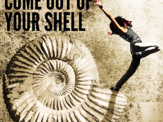 IDIOM - COME OUT OF YOUR SHELL