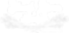 BRL Logo - Invert.png