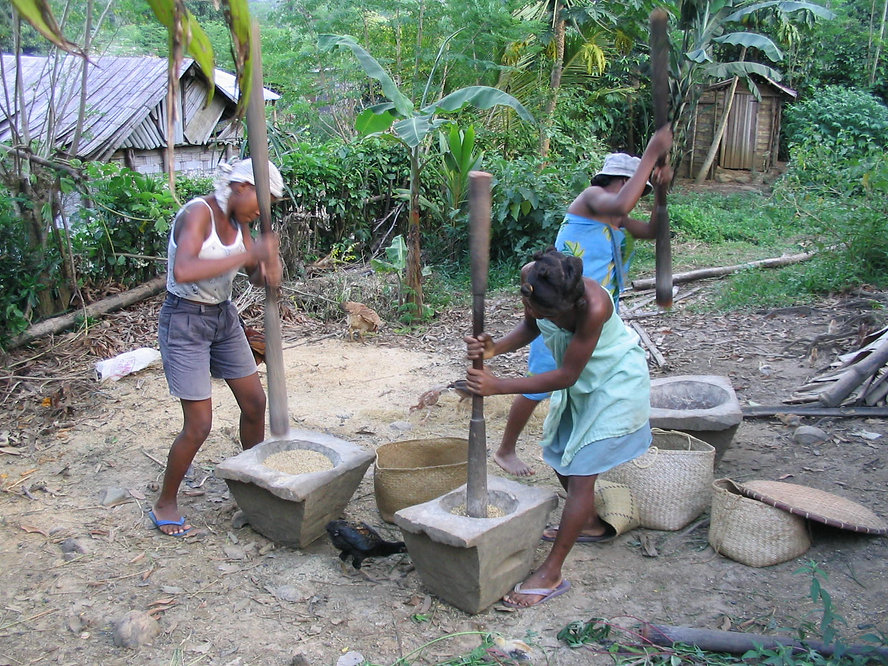 Malagasy_pounding_rice_01.jpg