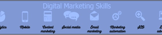 Looking for the Best Digital SEO Marketing Consultant -Austin TX