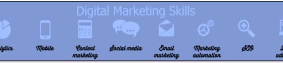 Skills of a top digital marketing consultant-Houston Texas