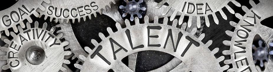 Talentmanagement Voorbij - Groepen