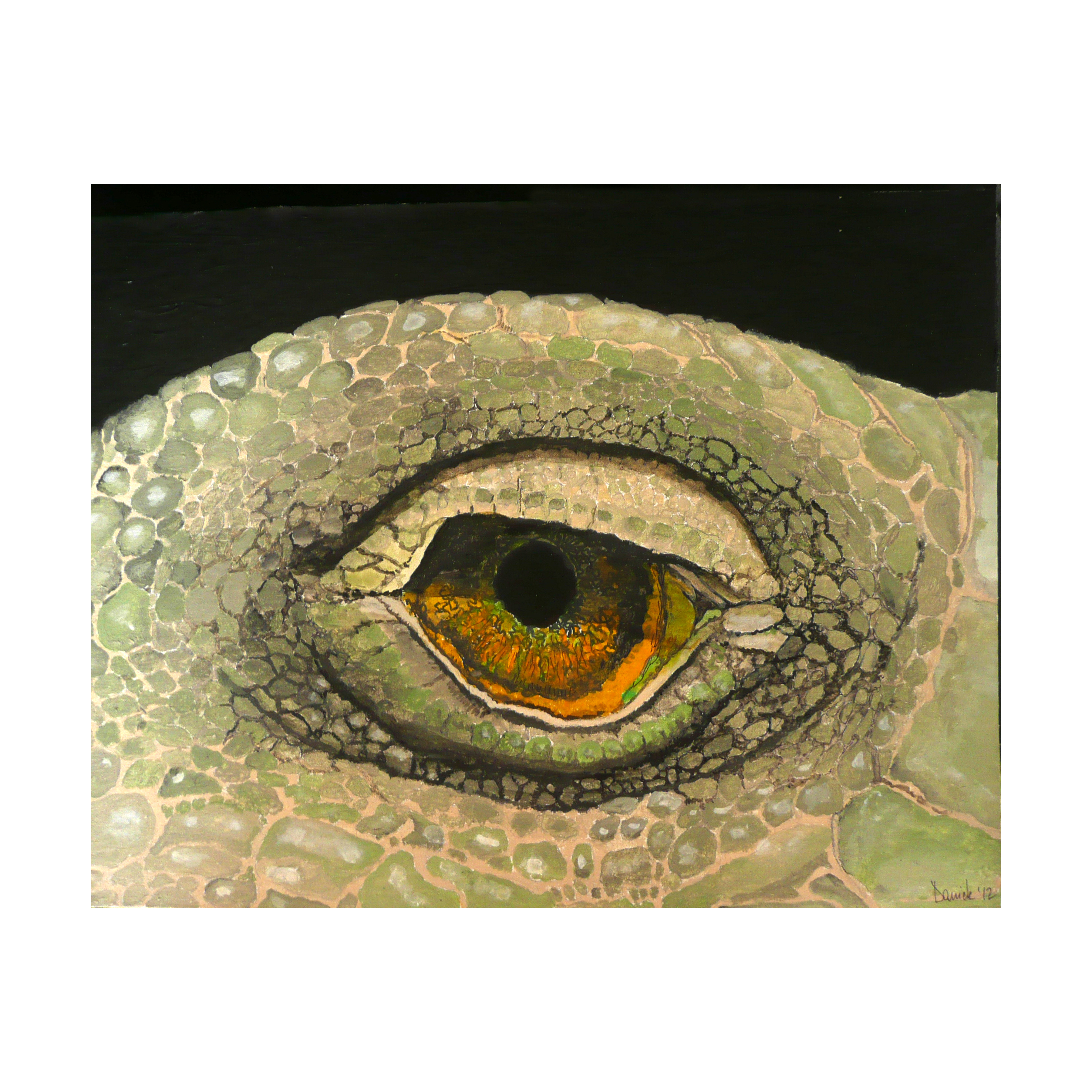 c 8 L'occhio dell Iguana, 2012, Acrilic on canvas tablet.
