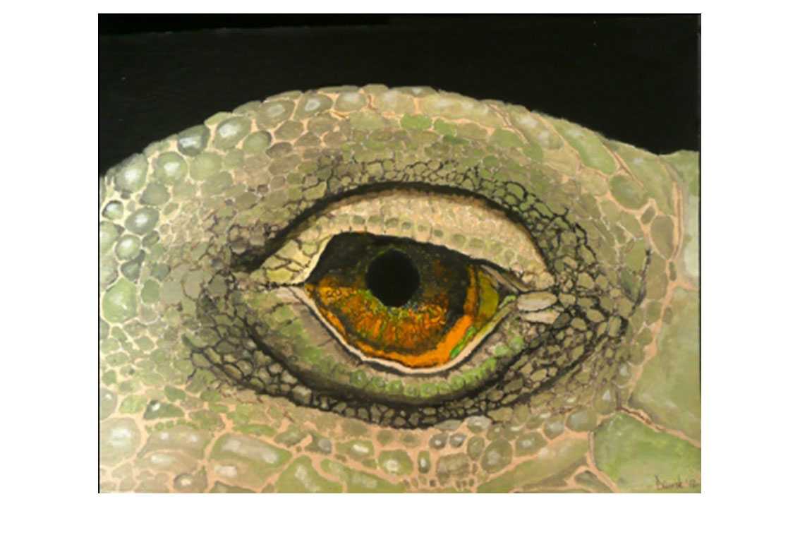 L'occhio dell Iguana - 2012 - acrylic on canvas (SOLD)