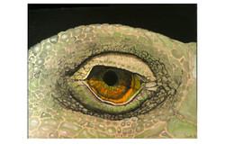 L'occhio dell Iguana - 2012 - acrylic on canvas (SOLD)