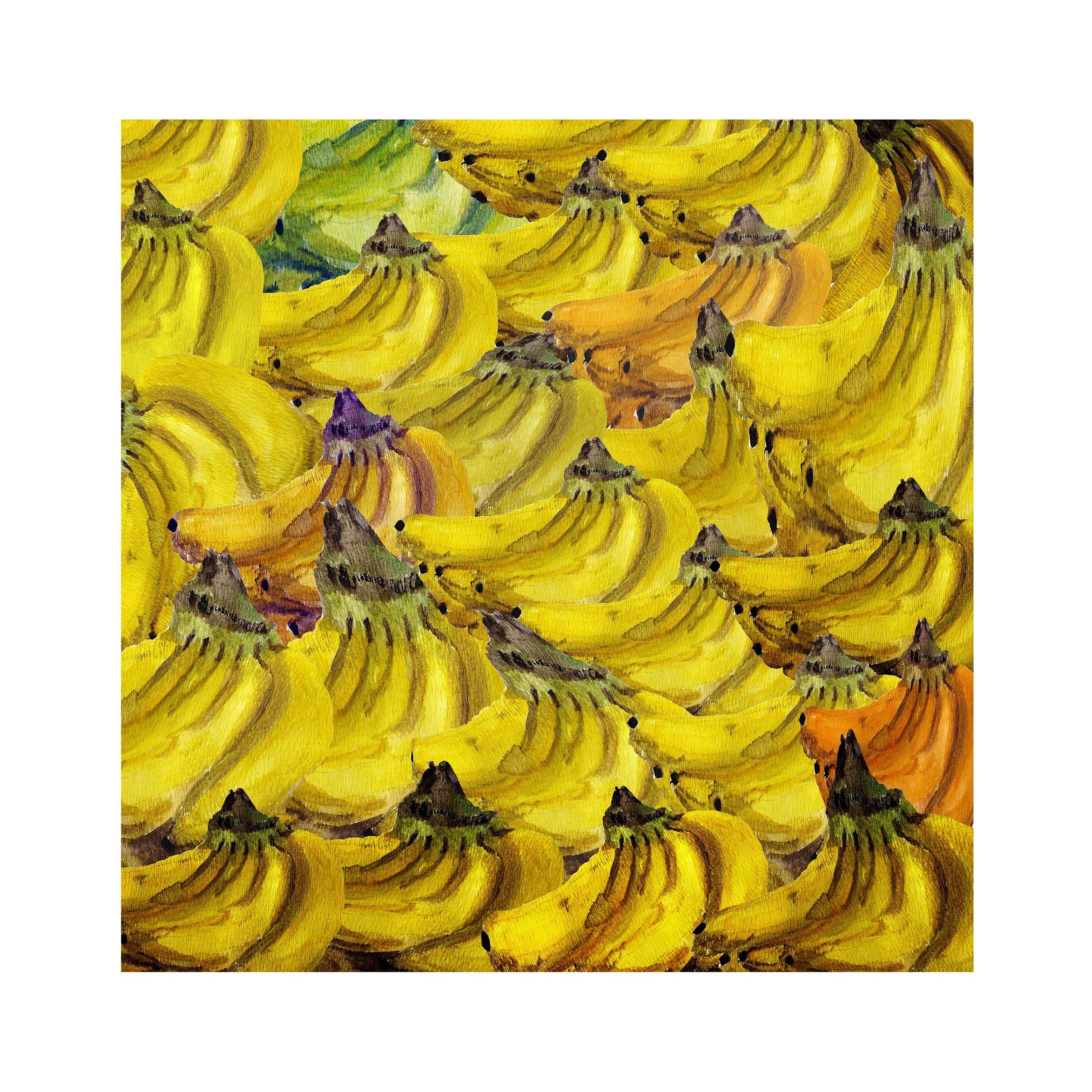 m 10 bananas 17 x 11