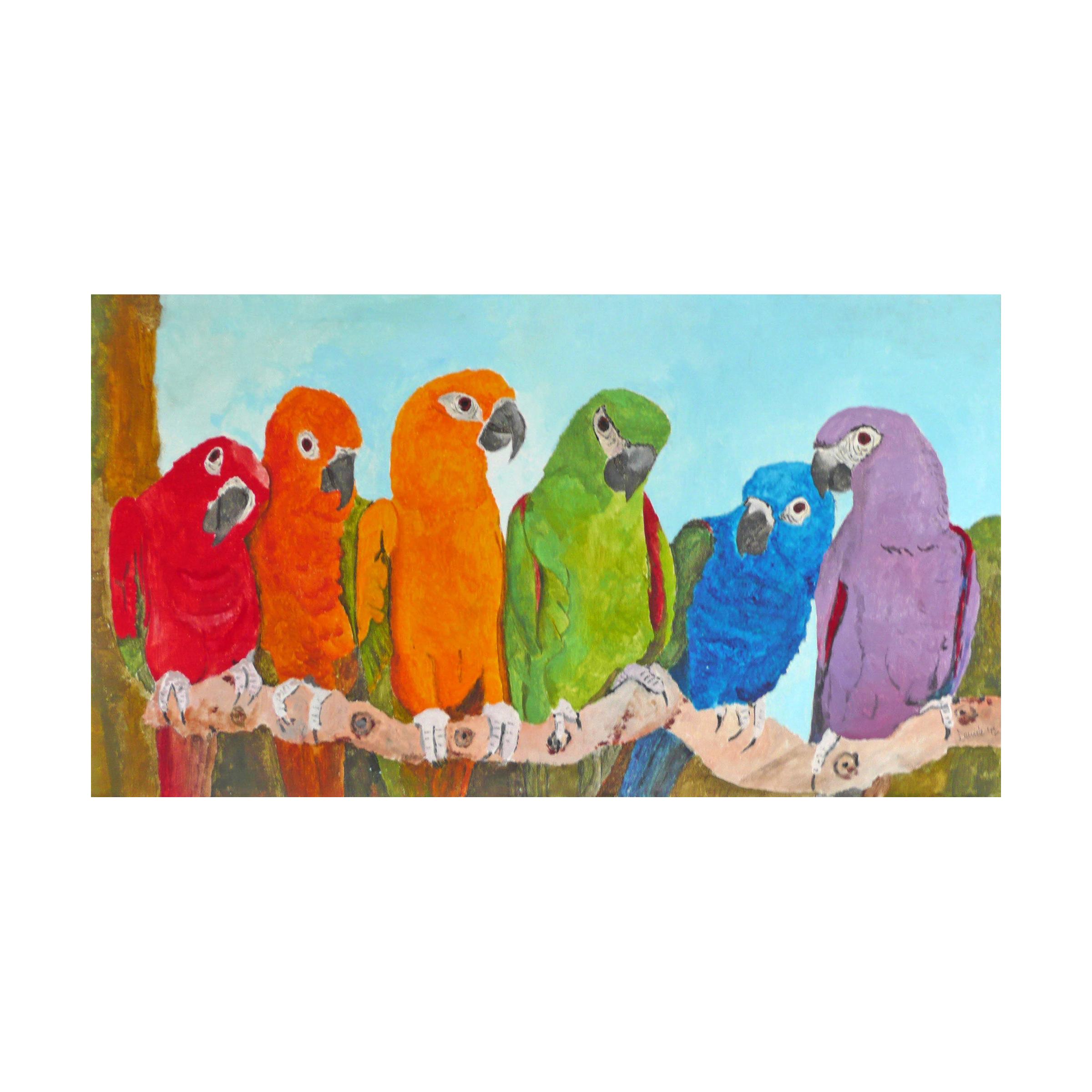 a 17 2013 multicolor parrots