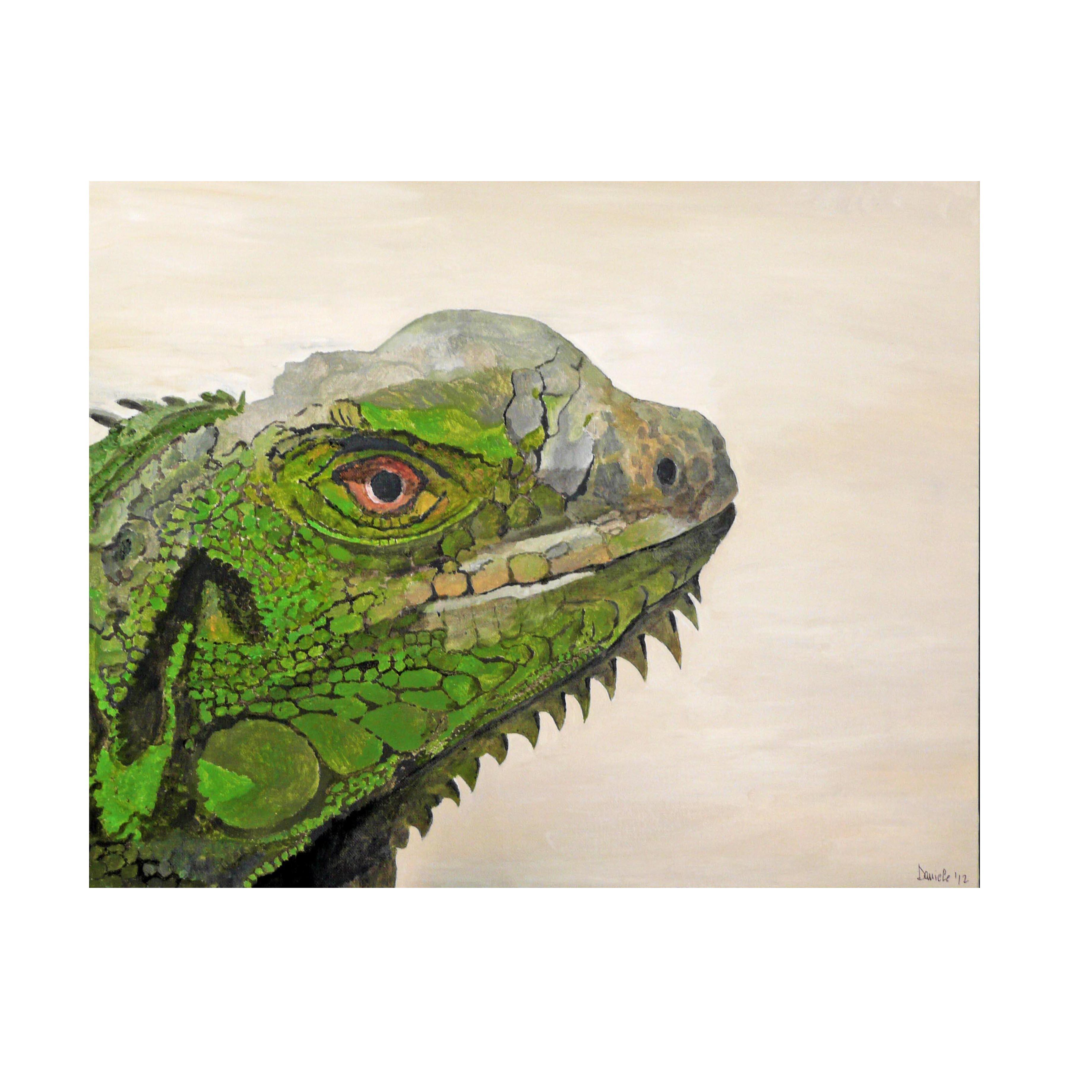 c 7 Iguana, 2012 Acrylic on canvas