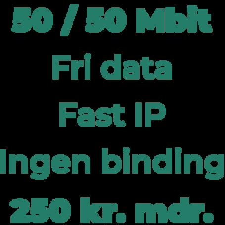 50 Mbit til erhverv inkl. oprettelse