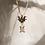 Thumbnail: Gargantilha drosófila turmaina Bicolor