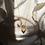 Thumbnail: Escapulário Plexo Solar