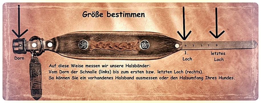 Windhundhalsband, Galgo Halsband, Whippet Halsband, Windspile Halsband, Greyhound