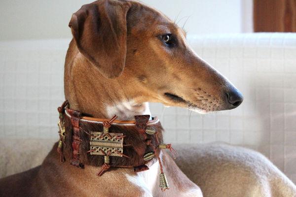 Windhundhalsband mit Perlen