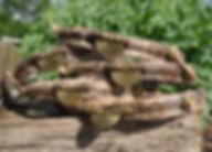 Schmuckhalsbänder, Windhundhalsbänder, Whippethalbänder, Greyhoundhalsban, Podencohalsband
