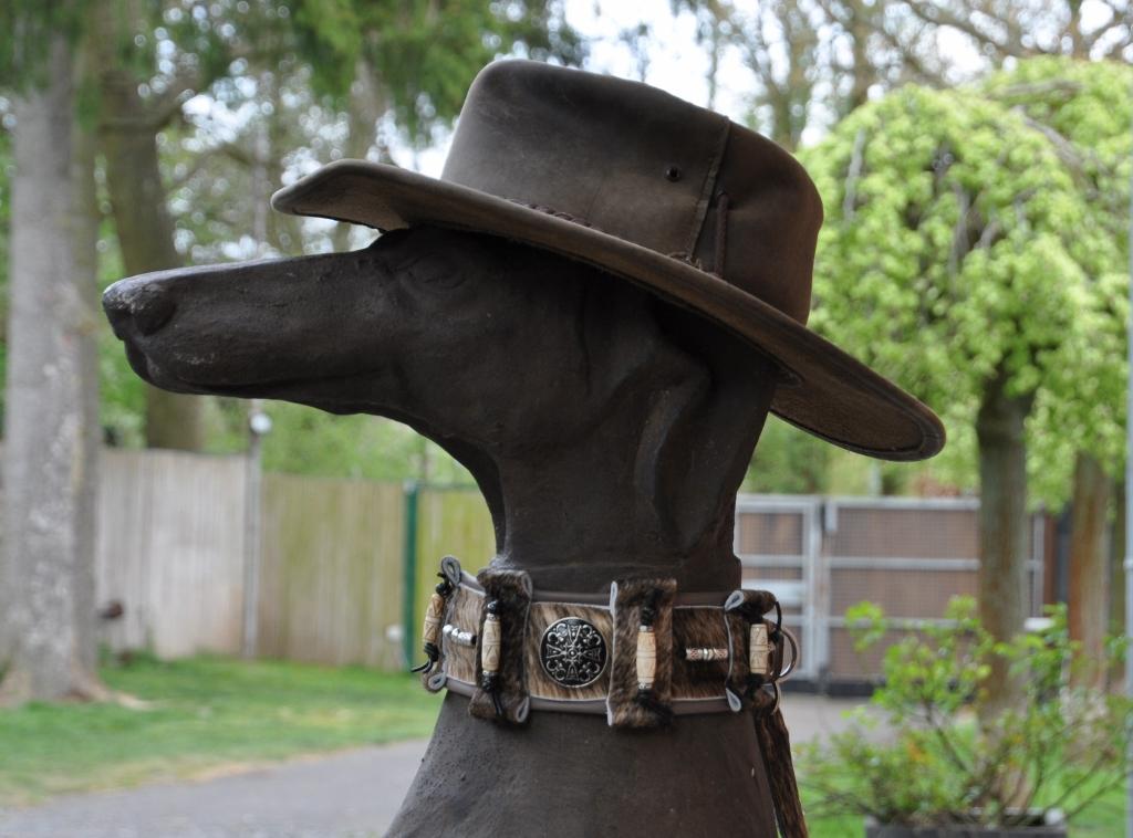 Galgo-Halsbänder, Whippet Halsbänder