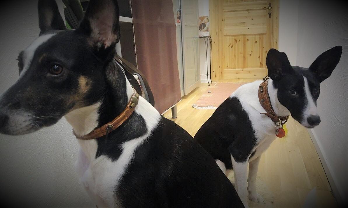 Lulu und Meggy