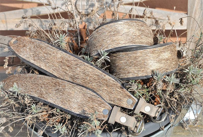 Windhundhalsband, Windhundhalsbänder